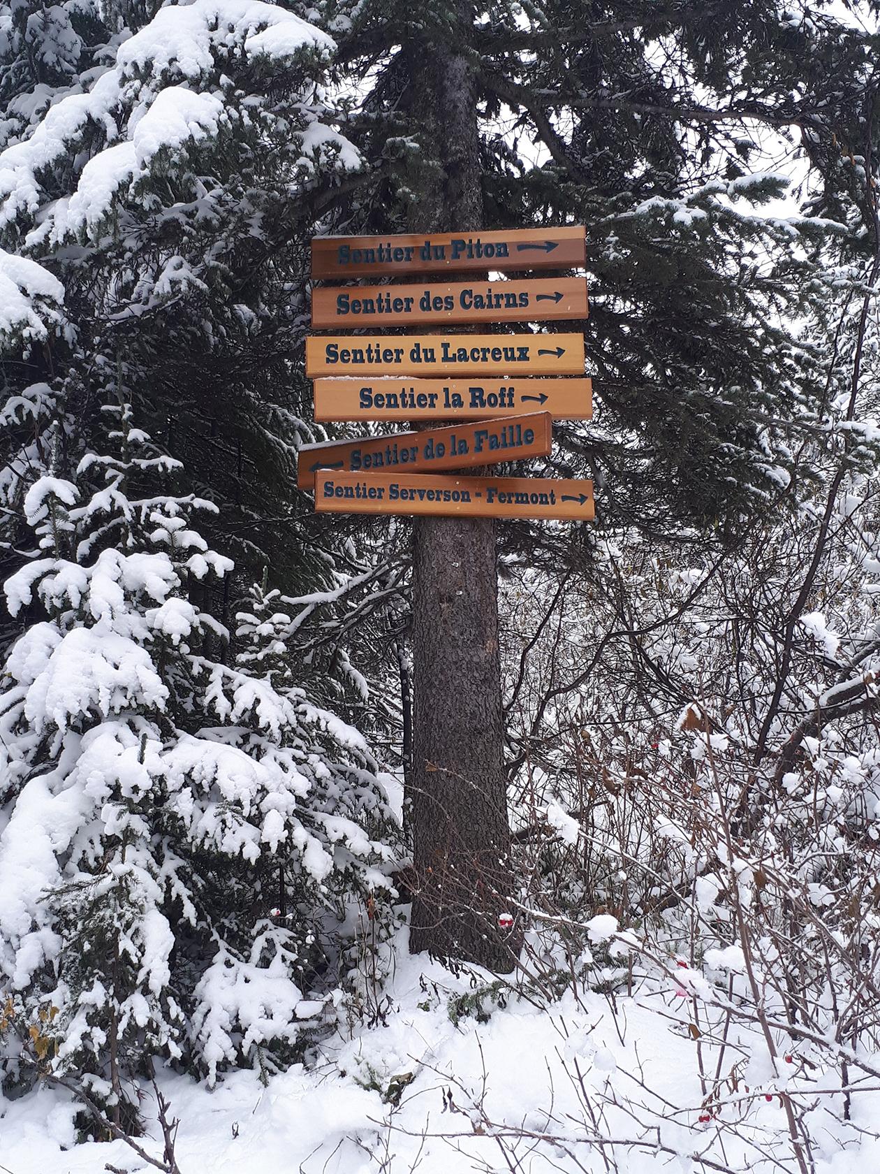 Pancarte, bois, cèdre, grave, signalisation parc