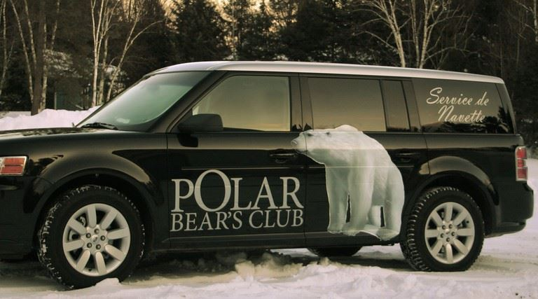 polar bear vinyle vehicule